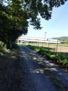 畑と小屋が見えてきました
