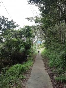 キャンプ村への道